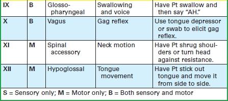 Cranial_Nerve_Assessment2