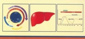 راهنمای کشوری مراقبت هپاتیت B