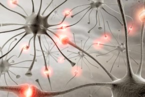 neurons_about