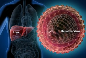 hepatitis_virus