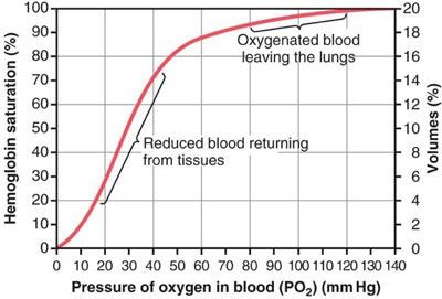 hemoglobin_dissociation_curve